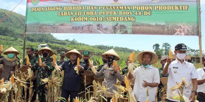Uji Coba Pupuk BIOS 44 DC Kodim 0610 Sumedang Panen Jagung Hibrida dan Penanaman Pohon Produktif